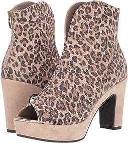 Ivory Cheetah