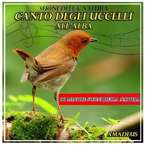 canto degli uccelli mp3 da