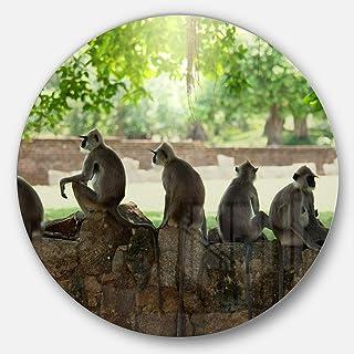 Designart Troop of Monkeys in Sri Lanka African Large Metal Wall Art- Disc of 23, 23X23-Disc of 23 inch, Brown/Green