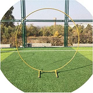 Baby Party Wedding Props Decor Wrought Iron Round Ring Arch Backdrop Round Arch Lawn Silk Artificial Flower Row Stand Wall Shelf,Gold,2.4 M