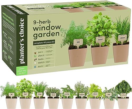 9 Herb Window Garden - Indoor Herb Growing Kit - Kitchen Windowsill Starter Kit - Easily Grow 9 Herbs Plants from Scr...