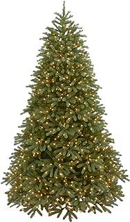 National Tree 6.5 Foot Jersey Fraser Fir Medium Tree
