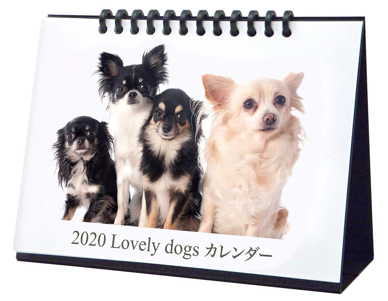 意味のある体現するリス2020LovelyDogs卓上カレンダー