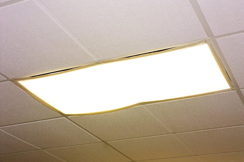 1. Educational Insights The Original Fluorescent Light Filters