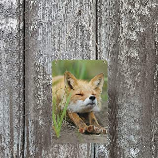 Custom Cute Fennec Fox New Wall Art Printing Metal TIN Sign Decor for Living Rooms,Offices Wall Decoration 8
