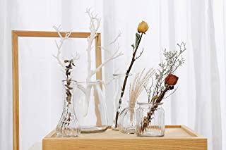 Anlin Rustic Small Glass Vase in Various Shapes Mini Vase Table Vase Set of 5