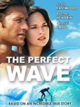 Best the perfect wave Reviews