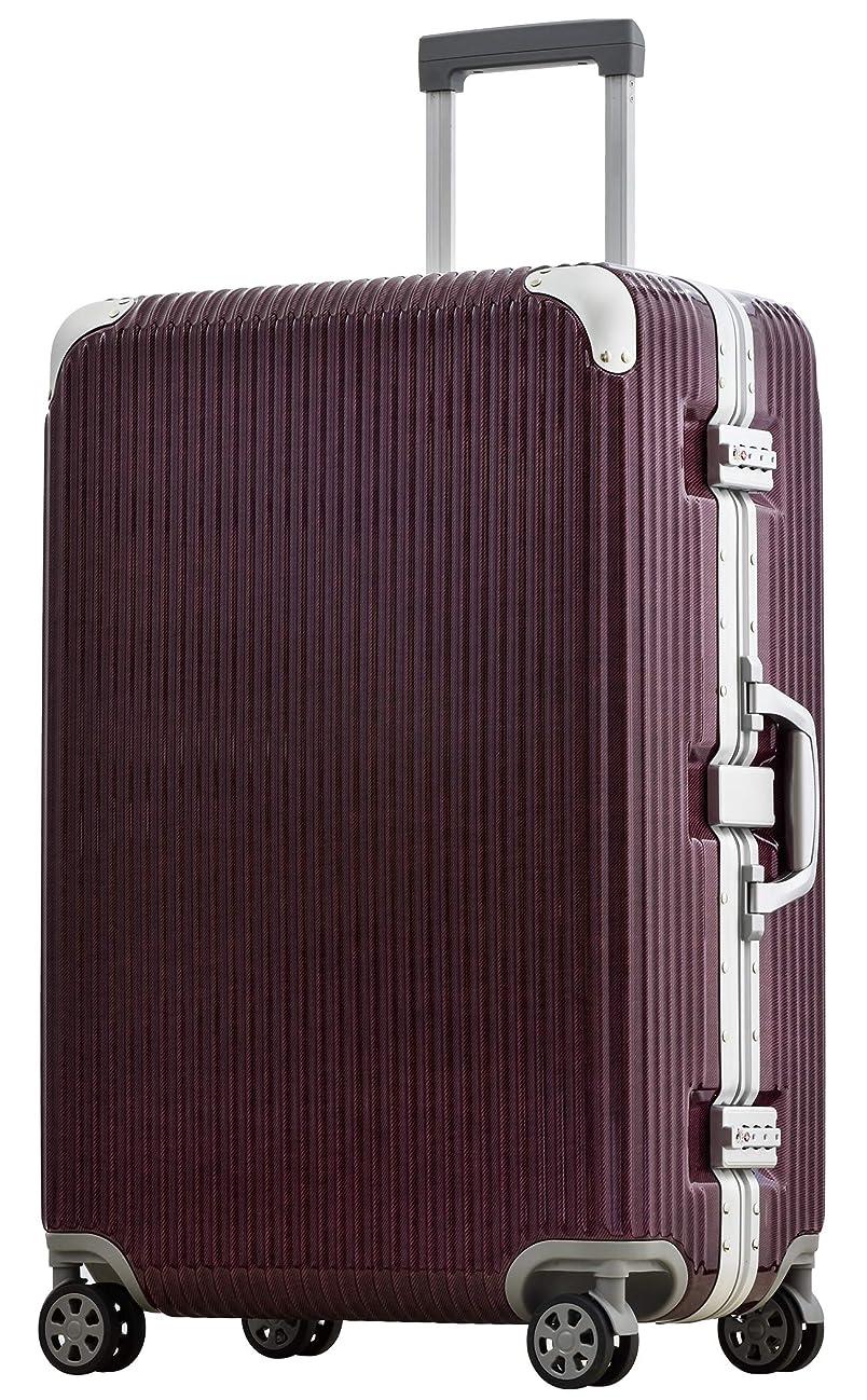 ほかに誘惑確かに[PROEVO/プロエボ] スーツケース フレームキャリー 受託手荷物 M L LL 静音 ダブルキャスター 8輪 大容量 軽量 アルミフレーム TSAロック キャリーケース キャリーバッグ