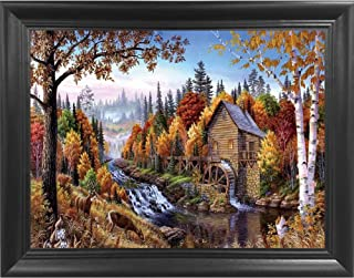 Best beautiful scenery forest Reviews