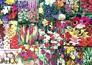 Portal Cool Planta 3X / Semillas Etiquetas: Flores del jardín de los bulbos de primavera y verano perenne, fácil de cultivar Quality Pack, etiquetas