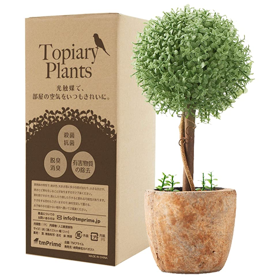 【Amazon.co.jp限定】観葉植物 フェイク 光触媒 消臭 トピアリー フェイクグリーン