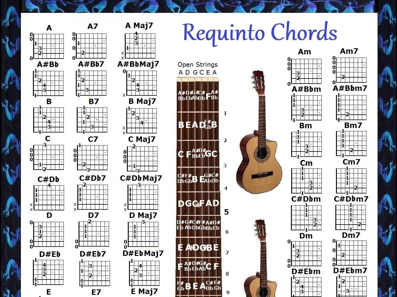 Requinto acordes & 5 Posición Logo Póster: Amazon.es: Instrumentos musicales