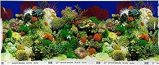 petco double sided aquarium background
