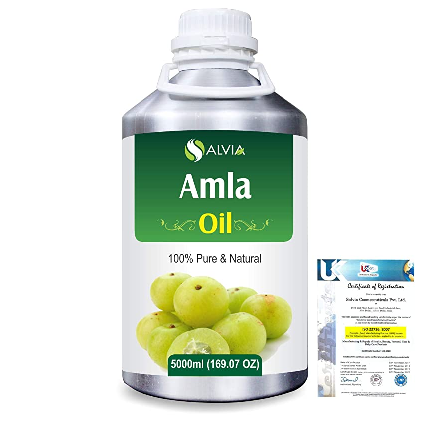 にやにや褐色収穫Amla Herbal (Phyllanthus emblica) 100% Natural Pure Oil 5000ml/169fl.oz.
