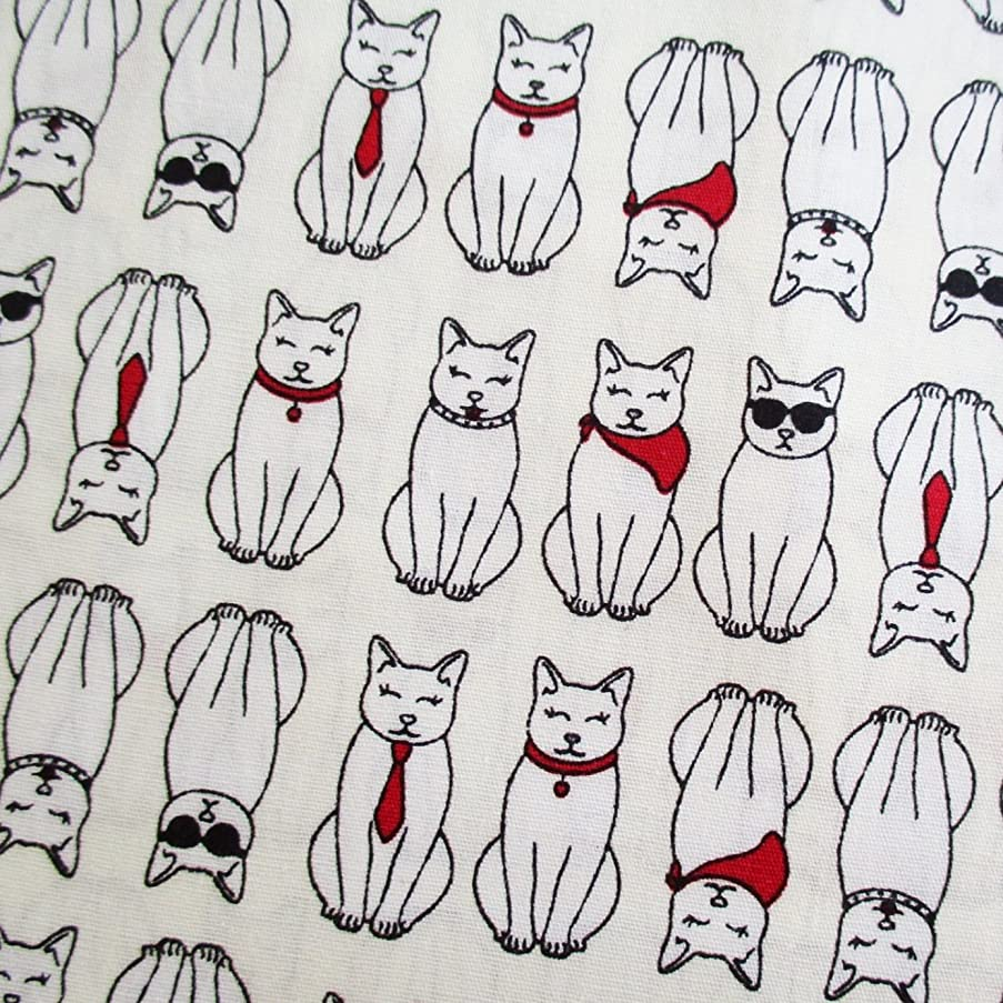 Black White Cat Kitten Kitty on Off - White Fabric 36 by 36-Inch Wide (1 Yard) - 1 Yard (CT669)