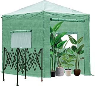 Outsunny 8' x 6' x 8' Portable Pop-up Walk-in Greenhouse with Roll-up Door & 2 Windows for Growing Flowers, Herbs, Vegetables