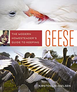 The Modern Homesteader's Guide to Keeping Geese: {Subtitle}