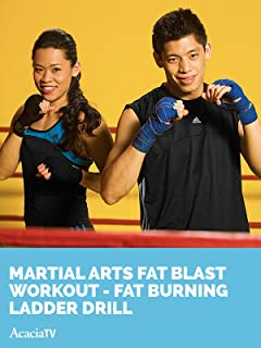 Martial Arts Fat Blast Workout Fat Burning Ladder Drill