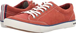 SeaVees - Westwood Tennis Shoe Varsity