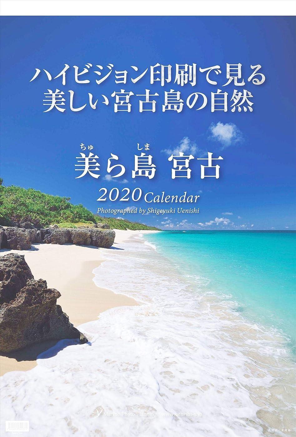 侵入する適応的挑む美ら島宮古 2020年壁掛けカレンダー 写真家 上西重行【マリンフォト企画】