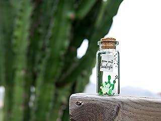 Eres muy suculenta -Mensaje en una botella. Miniaturas. Regalo personalizado. Divertida postal de amor.