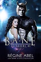 Bane (Guerriers Xi t. 4)