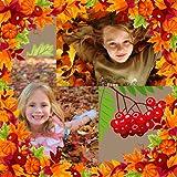秋の写真コラージュ