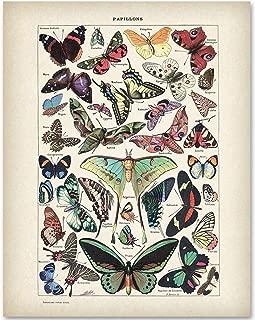 Best nature prints framed Reviews