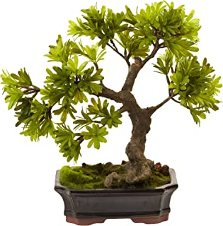Nearly Natural 4848 Podocarpus with Mossed Bonsai Planter