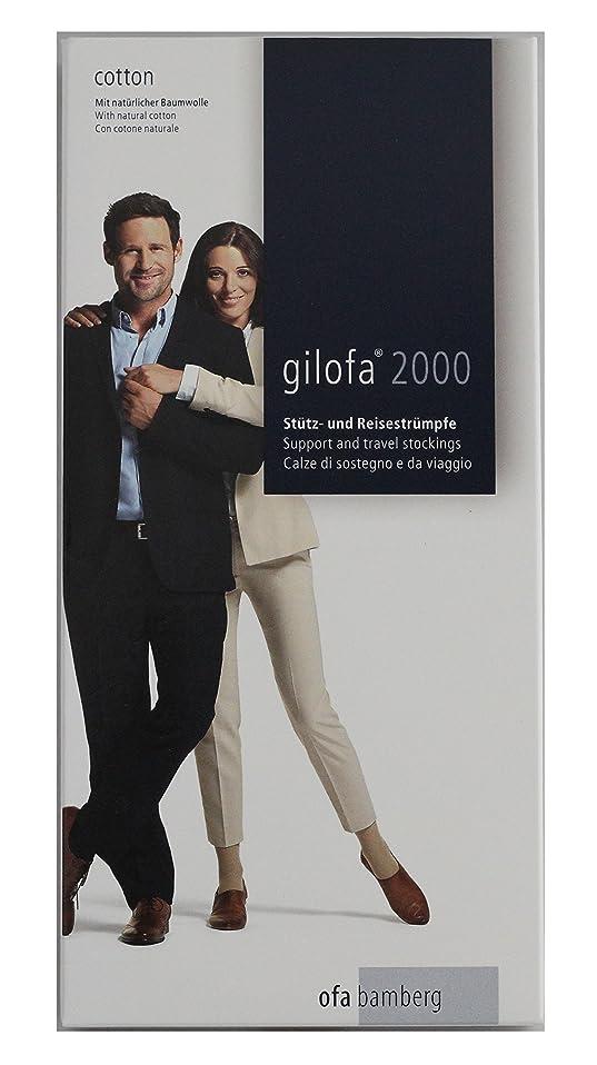 大腿違反午後ギロファ スタンダードソックス グレー Mサイズ(24.0~25.5cm)