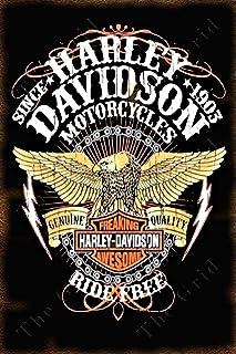 15 x 20 cm PLAQUE METAL vintage HARLEY DAVIDSON born to ride