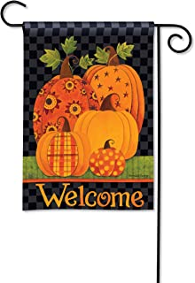 BreezeArt Studio M Patterned Pumpkins Fall Harvest Garden Flag - Premium Quality, 12.5 x 18 Inches