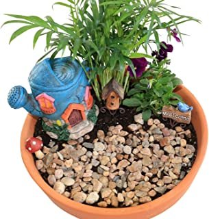 The Crafty Corner Company Fairy Go Round Fairy Garden Set - 5 Piece Starter Set with Watering Can House