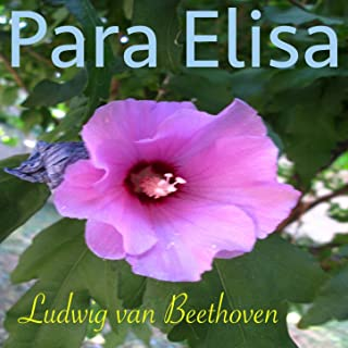 Beethoven: Para Elisa, WoO 59 (Piano Con Sonidos de la Naturaleza Version)