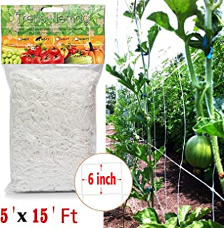 COMPATH Plant Trellis Netting Plant Support Vine Net Climbing Garden Trellis Net Garden Vine Plant Growing Flexible String Net (5x15ft-6 mesh Size)