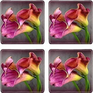 MSD Drink Coasters 4 Piece Set Image ID: 29600113 calla