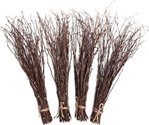 Alater Birch Twigs, 200 Pcs Natural Birch Branches for Craft, Wedding Arrangements, Party or Home Decor