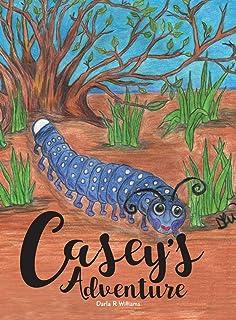 Casey's Adventure