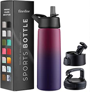 Triple Insulated Stainless Steel Water Bottle with Straw Lid – Flip Top Lid –..