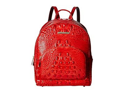 Brahmin Melbourne Mini Dartmouth Backpack (Candy Apple) Handbags