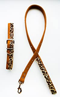 Bret Michaels XL Adjustable Leopard Print Dog Collar with Matching Four Foot Leash