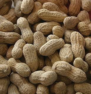Raw Peanut With Shell