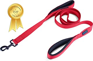 Waggin Tails Soft &Thick Dual Handle Dog Leash, Premium Nylon Double Padded Handles 6FT Length for Medium, Large or XLarge Dog Classic Comfort (Carnation Red)