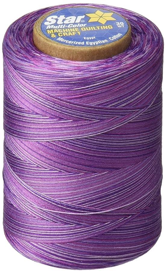 Star Thread V38-810 3-Ply 30wt T-35 Cotton Quilting & Craft Variegated Thread, 1200 yd, Plum