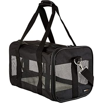 AmazonBasics Soft-Sided Mesh Pet Travel Carrier
