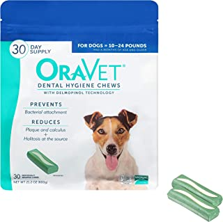 Best oravet for dogs Reviews