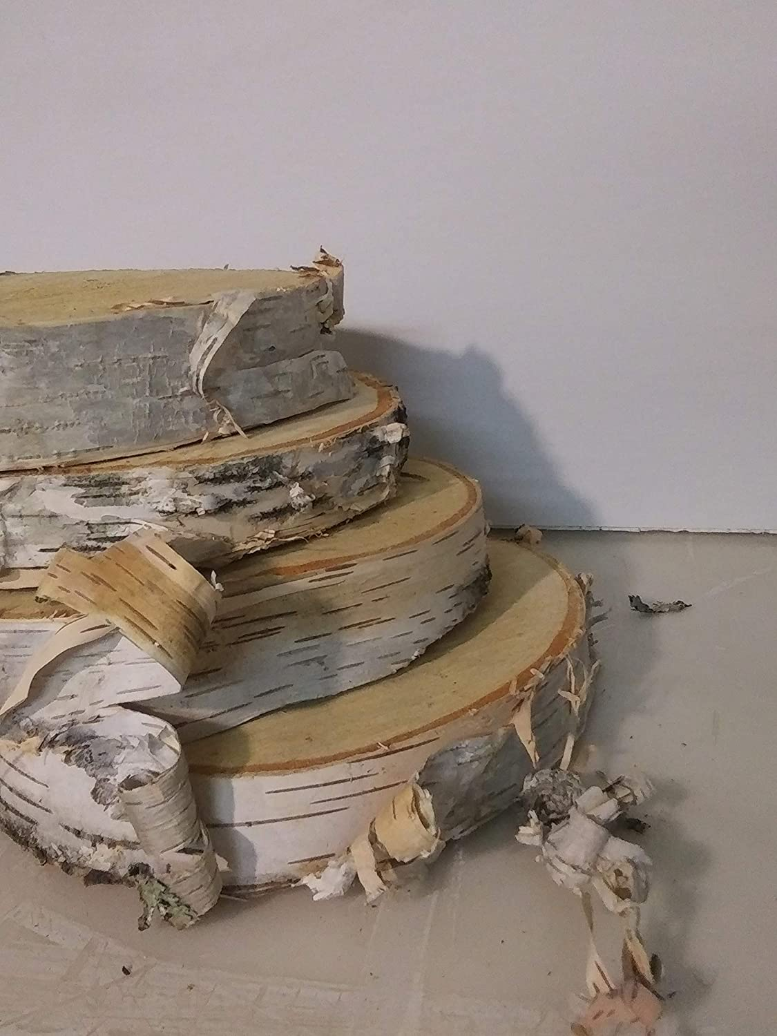 NEW before selling Natural Wood Slices Round Birch Slabs 7 Complete Free Shipping inches Rustic 5 Tr to