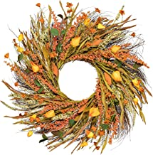 DearHouse 22 inch Fall Wreath Front Door Wreath Grain Wreath Harvest Gold Wheat Ears Circle Garland Autumn Wreath for Fron...