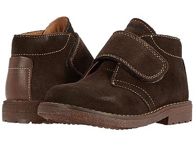 Primigi Kids 64155 (Toddler/Little Kid) (Chocolate Brown) Boy