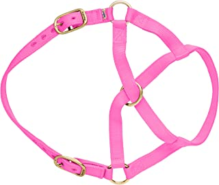 Perri's Mini Nylon Cow Halter